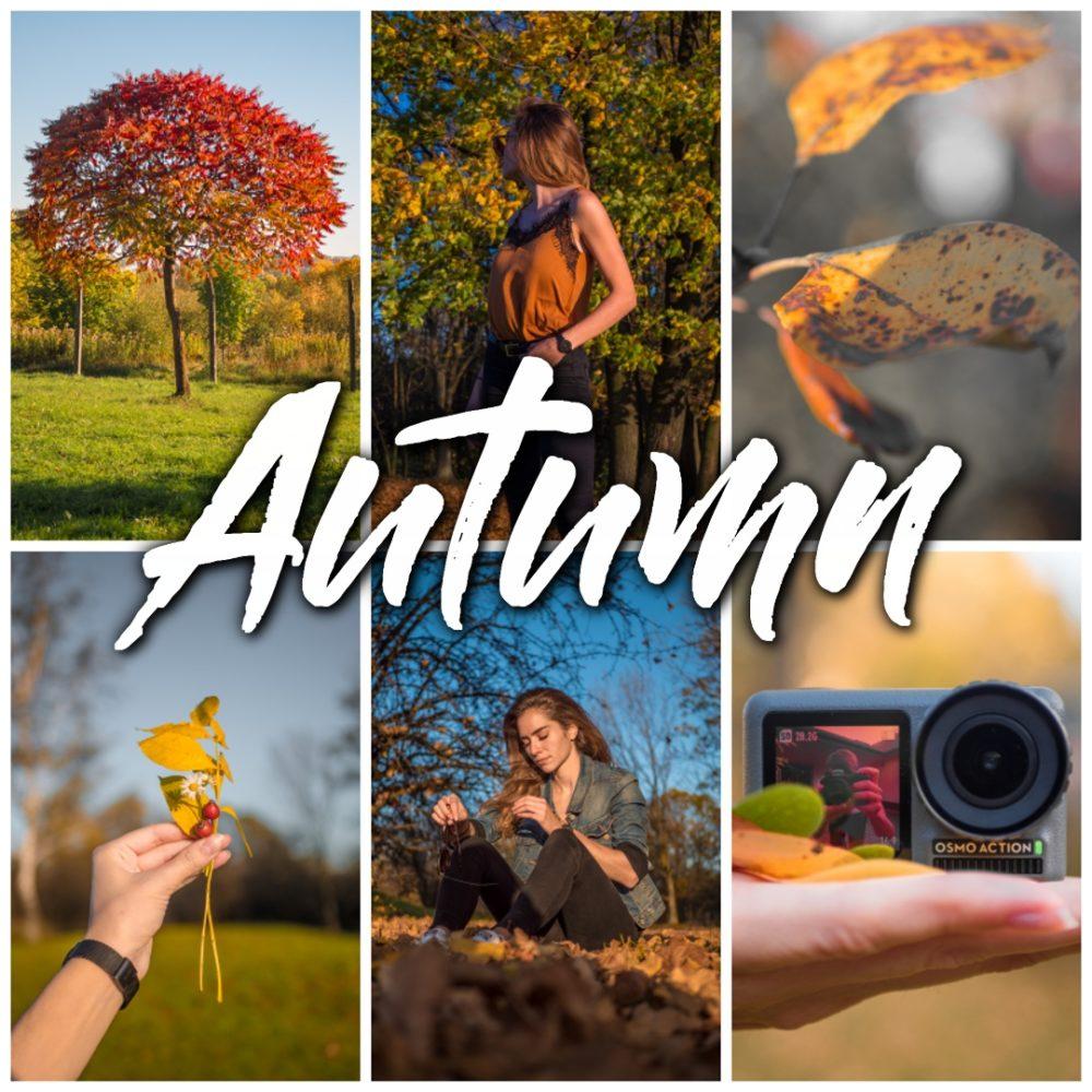 Autumn – Preset Pack
